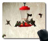 Wholesale Bird Drinkers - Custom Perfect Mouse Pad with Birds Feeders Drinkers Hummingbirds Non-Slip Neoprene Rubber Desktop Mousepad Laptop Mousepads