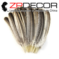 Wholesale Wholesale Feathers For Crafts - ZPDECOR feathers 35-30 cm 100 pcs lot Premium Handpicked NATURAL Beautiful Wild Turkey Wing Feathers For Craft Design DIY