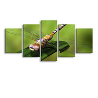 Wholesale cheap canvas paintings - 5 Panel dragonfly Painting Canvas Wall Art Picture Home Decoration Living Room Canvas Print Modern Painting--Large Canvas Art Cheap SD-001