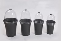 Wholesale Cover Pots - 100PCS-PACK Wholesale Free Shipping Plastic Transparent Planting Pot Lid Flower Pot Cap Cover for Home Gardens Tools Vientiane Bonsai Pots
