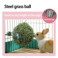 Wholesale Rabbit Dispenser - Free shipping New Pet Supplies Hay Dispenser Iron Ball Food Feeder For Chinchilla Guinea Pig Rabbit Hanging Bowl Grass Dispenser