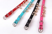 Best Selling Pet Cortex Collar Hanging Drill Teddy Poodle Dog Collars Color Aleatório