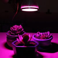 Wholesale Free Grow Tents - Wattshine Plant growing lamp LED grow light E27 lights Free shipping Full spectrum Indoor plants Grow tent Greenhouse Hot sale