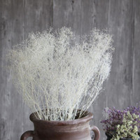 Wholesale Wedding Decoration Imports - Dream grass natural art dried flowers wholesale hay import shooting props small bouquet gift real flower stars home decoration Vase 14