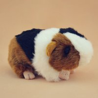 Wholesale Small Pig Plush - Animal Simulation Toy Guinea Pig Plush Doll Stuffed Animals Knuffels Small Toys Pluche Mini Dieren Gift For Baby Girl 70G0340