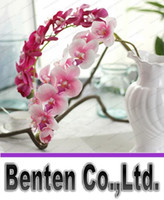 Wholesale Princess Display - 72cm Artificial Flowers Simulation Princess Butterfly Orchid Phalaenopsis for Wedding Flower 7colors rubber coating LLFA