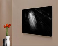 Wholesale Ground Pictures - White Feather Black Ground Canvas Painting Home Decor Canvas Wall Art Picture Digital Art Print for Living Room Wholesale