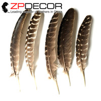 Wholesale Wholesale Feathers For Crafts - ZPDECOR feathers 20-25(8-10inch)100pieces lot For Craft Design Premium Handpicked NATURAL Wild Turkey Wing Feathers