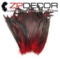 Wholesale Dyed Feathers Wholesale - Manufacturer ZPDECOR Exporting 25-30cm(10-12inch) 100pcs lot Excellent Quality Dyed Partly 9 Colors Cock Feathers for bulk Sale