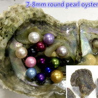 Wholesale AAAA Saltwater Round Akoya Pearl Oyster Colors Mixed Colors mm Cultured Pearl Oyster Vacuum Packing to Canada
