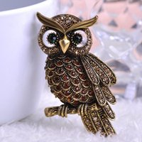 Wholesale Antique Buckle Jewelry - Vintage Owl Brooch Corsage Scarf Clip Antique Gold Plated Crystal Parrot Brooches Lapel Pin Broches Fine Jewelry Women Buckles