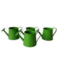 Wholesale Garden Water Buckets - Free shipping Watering can sharp pure garden bucket tin box Iron pots flower metal easter egg pot green color