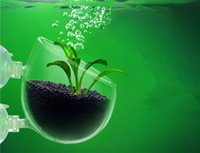 Wholesale Aquarium landscaping crystal glass pot aqua plant cultivation pot aquarium plant tank accessories free suckers and