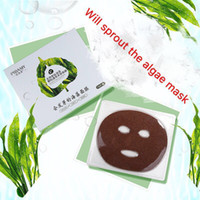 sprout powder - Will sprout the small particles of seaweed forming mask natural moisturizing sensitive skin pregnant women are available