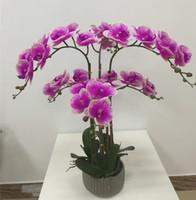 künstlicher schmetterling für display großhandel-Künstliche Motte Orchidee blume fühlt gut Display blume schmetterling orchidee klebstoff kunststoff blume hause hochzeit dekoration DHL JH002