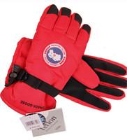 Wholesale Rabbit Finger Gloves - Canada Windproof Gloves Big Flower Rabbit Goose Snowflake Gloves Outdoor Winter Workout Keep Warm Fingers Gloves