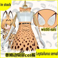 Wholesale Friends Costumes - 2017 Kemono Friends Project Leptailurus Serval Cosplay Costumes Carnaval Costume Halloween Christmas Costume