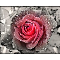 Wholesale Cross Stitching Flowers - New 5D DIY Diamond Painting Flower Cross Stitch Square Diamond Rhinestone Pictures of Crystals Embroidery Patchwork Water Rose
