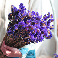 """Wholesale Bulk Flowers For Crafts - Royal Purple Chinese Forget-Me-Not Dried Flower Bunch 10 Stems(14"""" - 18"""" Long) for Home Decor, Crafts, Gift,Wedding or Any Occasion"""