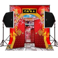 Wholesale Chinese Photography Background - chinese fortune new year garden scenic photography backdrops for families photos camera fotografica digital props studio photo background
