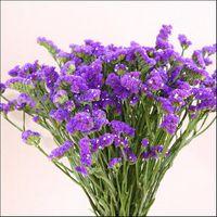 oferta especial natural forget no flores secas flores decorativas de la boda da de san valentn decoracin domstica ramos envo gratis