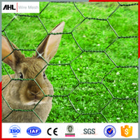Wholesale Factory Popular Galvanized Zinc Coated Wire Hexagonal Rabbit Chicken Wire Mesh