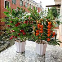 Wholesale Cherry Ornament - Home Decor Fruit Orange Cherry Tree Emulate Bonsai Simulation Decorative Artificial Flowers Fake Green Pot Plants Ornaments