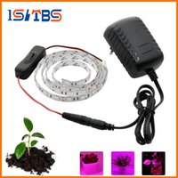 Wholesale Grow Light Set - 2017 Hot sale LED Grow Lights DC12V Growing LED Strip Plant Growth Light Set with Adapter and Switch.