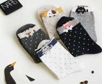 Wholesale Korea Cat Cartoon - Korea Animal Socks Top Quality Teen Women Socks Cute Cartoon Cat Polka Dot Adult Socks Teenager Cotton Kawaii Ankle Sock 12 Pair Pack