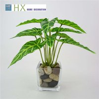 Wholesale Taro Wholesalers - 2017 New(30 pcs lot)Artificial plant,12 fork spring taro leaves,plant wall,high simulation,home decoration,plant wall fittings