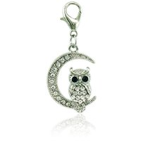 Wholesale owl moon resale online - Brand Fashion Color Charms With Lobster Clasp Rhinestone Moon Owl Animal Pendants DIY Jewelry Making Accessories