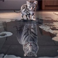 Wholesale 3d DIY Diamond Embroidery Painting Animals of Cat To Tiger Home Decoration Wall Painting of Diamond Mosaic Painting