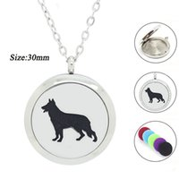 Lockets America all Panpan Jewelry! wholesale mangetic 25mm 30mm 316L Stainless Steel Essential Oil Diffuser locket dog shape perfume locket necklace