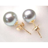 Wholesale Shell Pearls Stud - Wholesale Sea shell Grey Shell Pearl 10mm Gold plated Stud Earring AAA+0066
