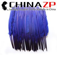 Wholesale pointer led online - Leading Supplier CHINAZP Crafts Factory cm inch Hand Select Dyed Royal Blue Goose Primary Pointer Feather For Decoration