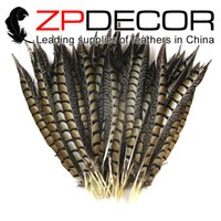 Wholesale Ladies Prom Dress Wholesale - ZPDECOR 25-30cm(10-12 inches) Unique First- class Quality Natural Lady Amherst Pheasant Feathers for Burlesque Fancy Dress Party Prom Dress