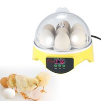 Wholesale 7 Eggs Mini Egg Incubator Controller Hatcher Poultry Hatchery Machine for Chicken Duck Quail Birds