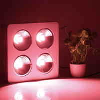 Wholesale Wholesale Grow Tents - New Arrival Led Grow Light COB 200W 400W 800W Full Spectrum for Greenhouse Tent Indoor Veg Plants Growing & Flowing Hydroponics Grow Lights