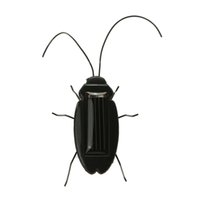 Wholesale Solar Power Black Cockroach Bug - Solar Power Cockroach Prank Insect Toy Cute Cockroach Insect Bug Teaching Toy Gift funny Toys Gifts