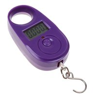 Wholesale Mini Scale Kg - Wholesale-25kg 5g 25kg*5g Mini Purple Display Hanging Luggage Fishing Weighing Digital Scale KG LB