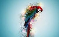ingrosso uccelli d'arte della parete di tela-HD Stampato Modern Decor Art Decorazione murale Dipinti ad olio Macaw Parrot Uccello Tropical Psychedelic Artwork Picture on The Canvas