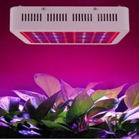 Wholesale Wholesale Led Grow Panels - Sunway Lighting 600W 800W 1000W LED Grow Light Kit Free Power cord 10W Hydroponic Grow Lamp Panel DHL USA UK Canada Germany