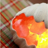 Wholesale Craft Sea Shell - Sea Shell Crafted Himalayan Natural Crystal Salt Lamp with Bulb and Dimmer Control LED Night lamp Air Purification Therapy