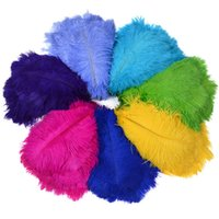 Wholesale wholesale white feather accessories online - 100 Color Ostrich Feather Bird Hair Ornaments Stage Props Clothing Accessories CM Feather Wedding Decoration