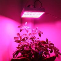 beste led-hydroponik-lichter großhandel-Neuankömmlinge 800W Vollspektrum LED Grow Light Hydroponics 800W LED Pflanzenlampe Best For Veg Flower Greenhouse Grow Tent Hydroponic Lighting