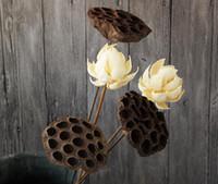 fleurs de lotus décoratives achat en gros de-Fleurs de lotus séchées Vintage, fleurs naturelles et sèches en gros, fleurs réelles et fleurs d'art décoratif