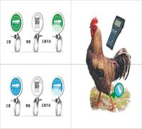 Wholesale Pull type birds and chickens goose birds birds foot ring tied poultry traceability tag feet with two dimensional code quarantine footsteps c