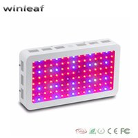 Wholesale winleaf palnt lamp W Double Chips LED Grow Light Full Spectrum nm For Indoor Plants and Flower Phrase Very High Yield