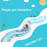 Rat sport track accessories - toys Hamster running ball track Toy Chinchilla Accessories small pet Runway toys Hamsters and Hedgehog Runway