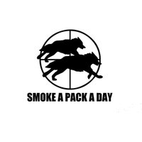 Wholesale Wolf Car Vinyl - Wholesale 10pcs lot Wolf Sighting Stop Smoking Smoke A Pack A Day Funny Car Sticker RV Truck Car Styling Vinyl Decal